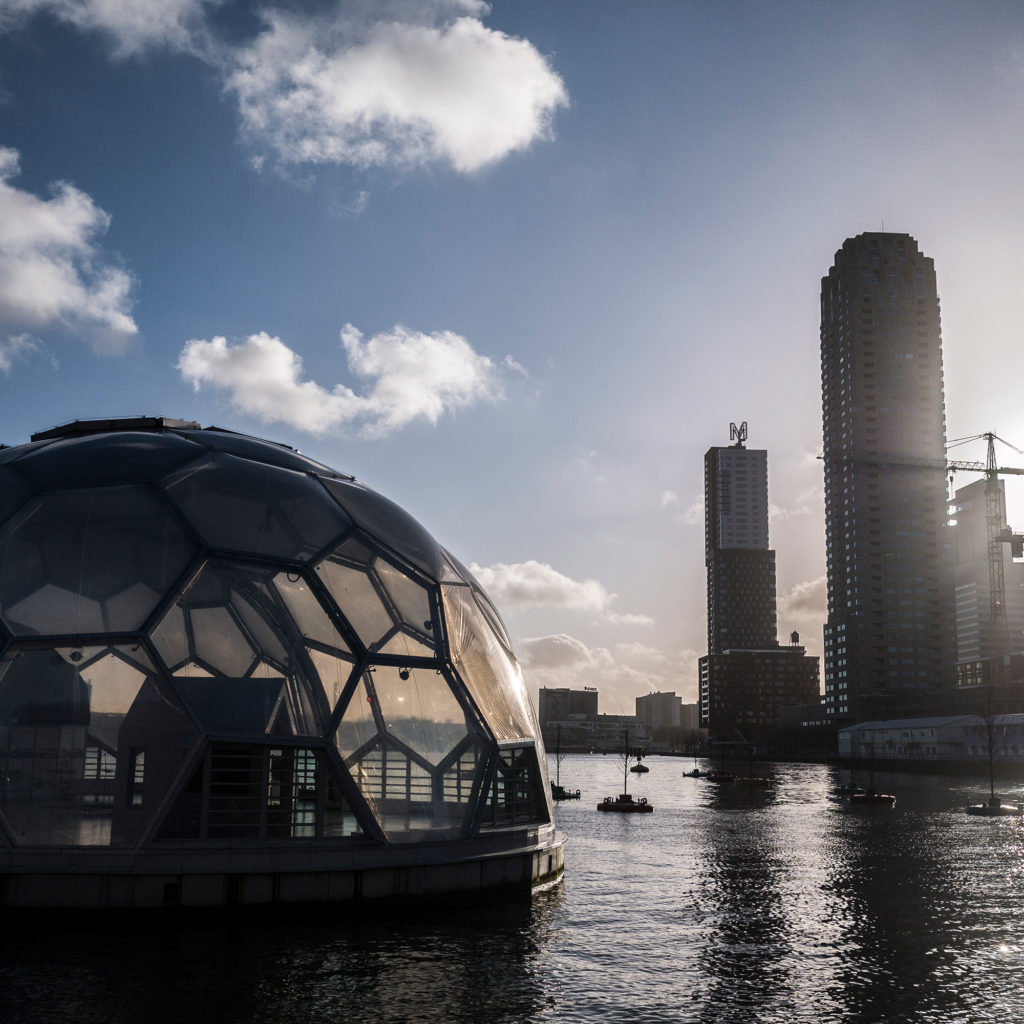 """Looking out from Rotterdam's """"floating pavilion"""" onto the Kop van Zuid, a former port area redeveloped into an office district. The De Rotterdam building (a """"vertical city"""" according to architects OMA) looms over the """"bobbing forest,"""" a cluster of trees floating on buoys in the Rijnhaven harbor. (Photo by Joris van Gennip/The GroundTruth Project)"""