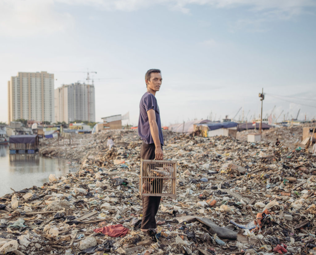 A man with his pigeons poses for a photograph in the Pasar Ikan district of North Jakarta, which was recently bulldozed, leaving its residents homeless. (Photo by Muhammad Fadli)