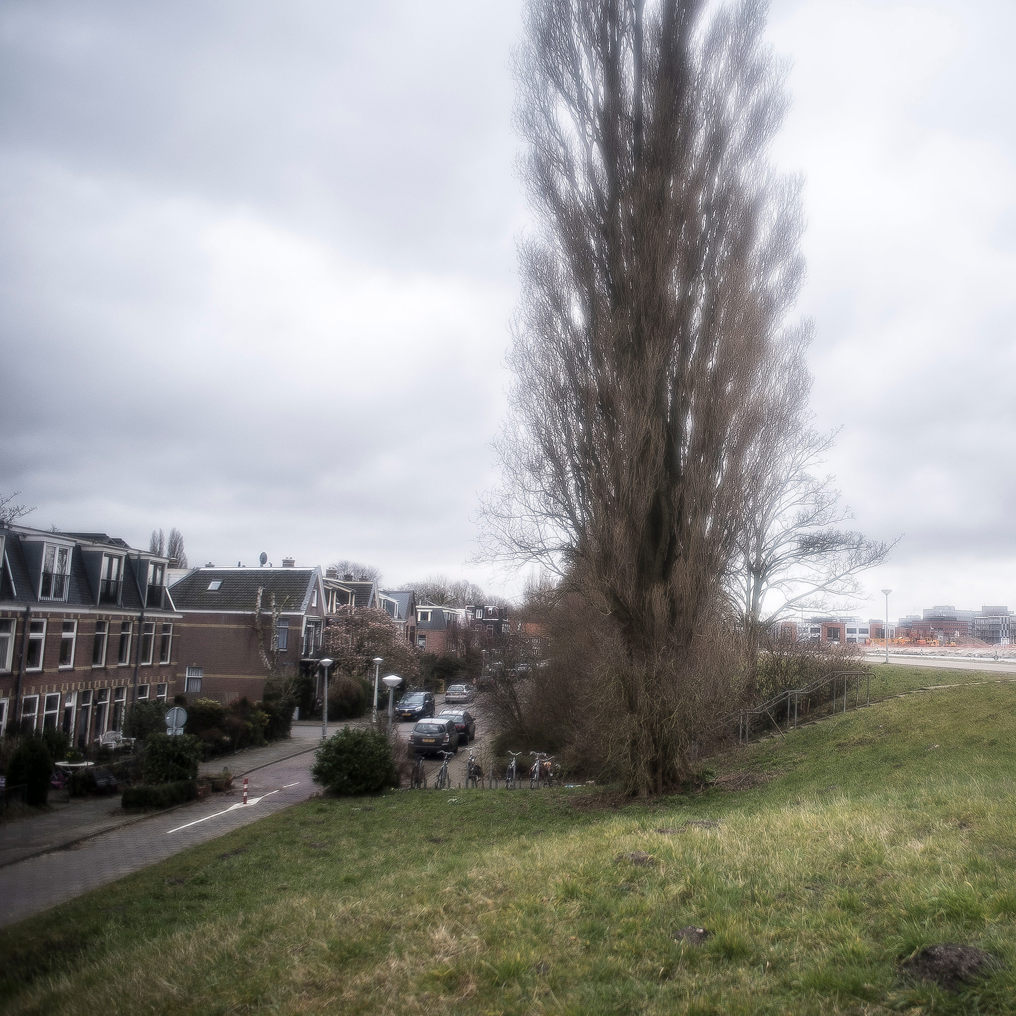 The Watergraafsmeer, now part of East Amsterdam, was reclaimed from marshland in the 17th century. If the levee fails, 60,000 people would be inundated. (Photo by Joris van Gennip/GroundTruth)