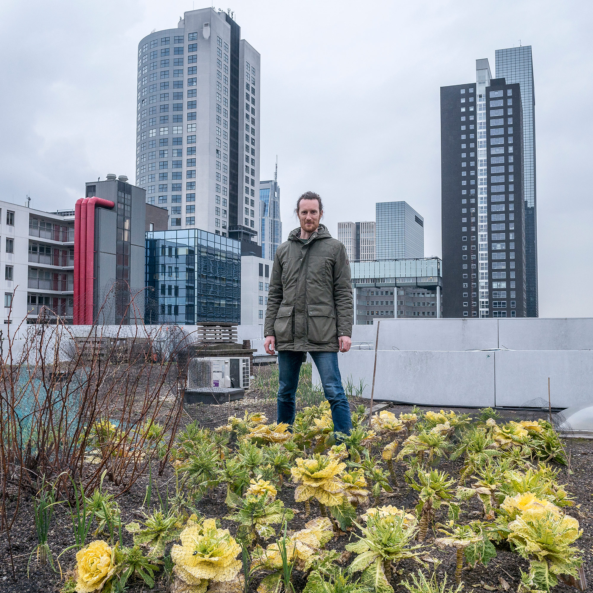 Wouter Bauman is a beekeeper and rooftop farmer at Dakakker (Roof­Acre), the first and biggest city agricultural roof of Europe. It's located atop the Schieblock building in downtown Rotterdam. (Photo by Joris van Gennip/GroundTruth)