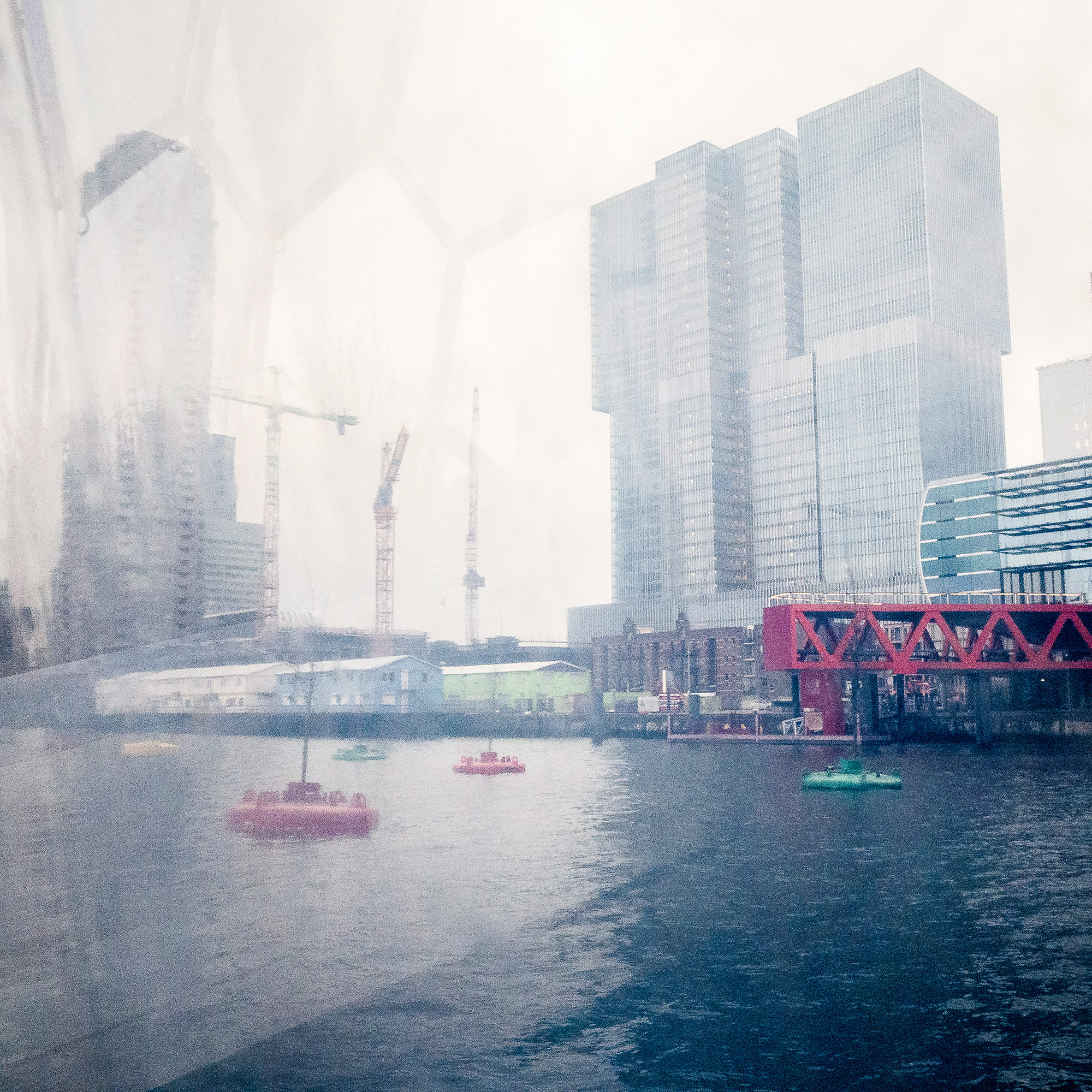 "Looking out from Rotterdam's ""floating pavilion."" The De Rotterdam building (a ""vertical city"" according to architects OMA) looms over the ""bobbing forest,"" a cluster of trees floating on buoys in the Rijnhaven harbor. (Photo by Joris van Gennip/GroundTruth)"