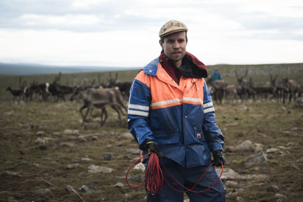 Simon Issát Marainen tends his reindeer in northern Sweden. (Camilla Andersen/GroundTruth)