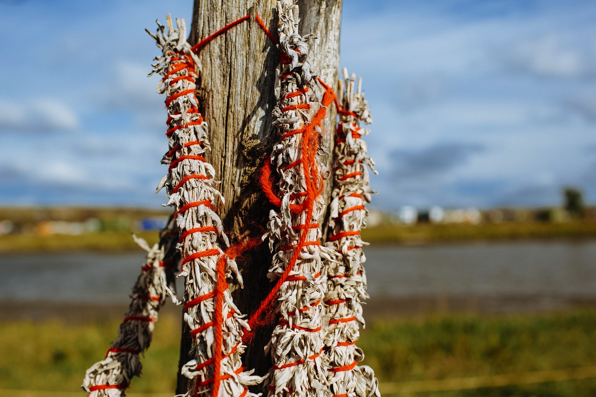 Dried sage, which plays an important role in Native American spirituality, hangs on a fence post on the banks of the Cannon Ball River overlooking the Oceti Sakowin Camp on Monday, Sept. 12, 2016. (Photo by Angus Mordant/Groundtruth)