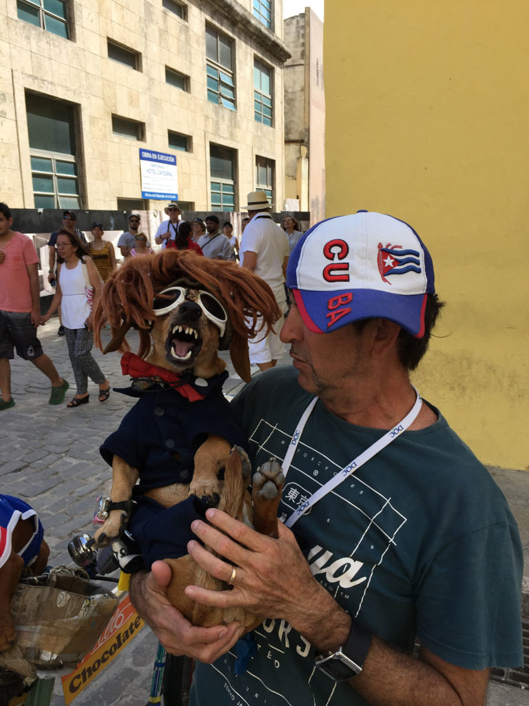 Pillo, a street performer in Havana, holds his dog, Chocolate, who he dressed up as President Trump. (Photo by Charles Sennott/GroundTruth)
