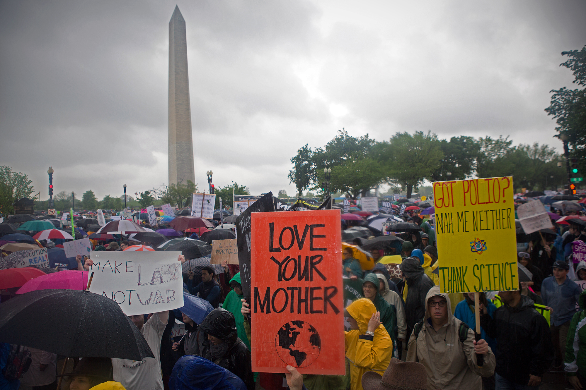 """Love your mother earth,"" one sign reads at the Science March in Washington, D.C."