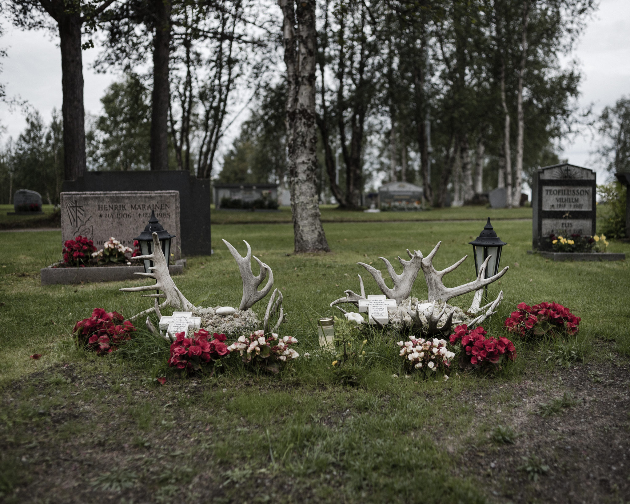 The graves of Gustu and Heaika Marainen are decorated with flowers and antlers. The two young men, both indigenous reindeer herders in Arctic Scandinavia, took their lives in a time when climate change is jeopardizing their way of life. Click on the photo to see the story. (Photo by Camilla Andersen/GroundTruth)