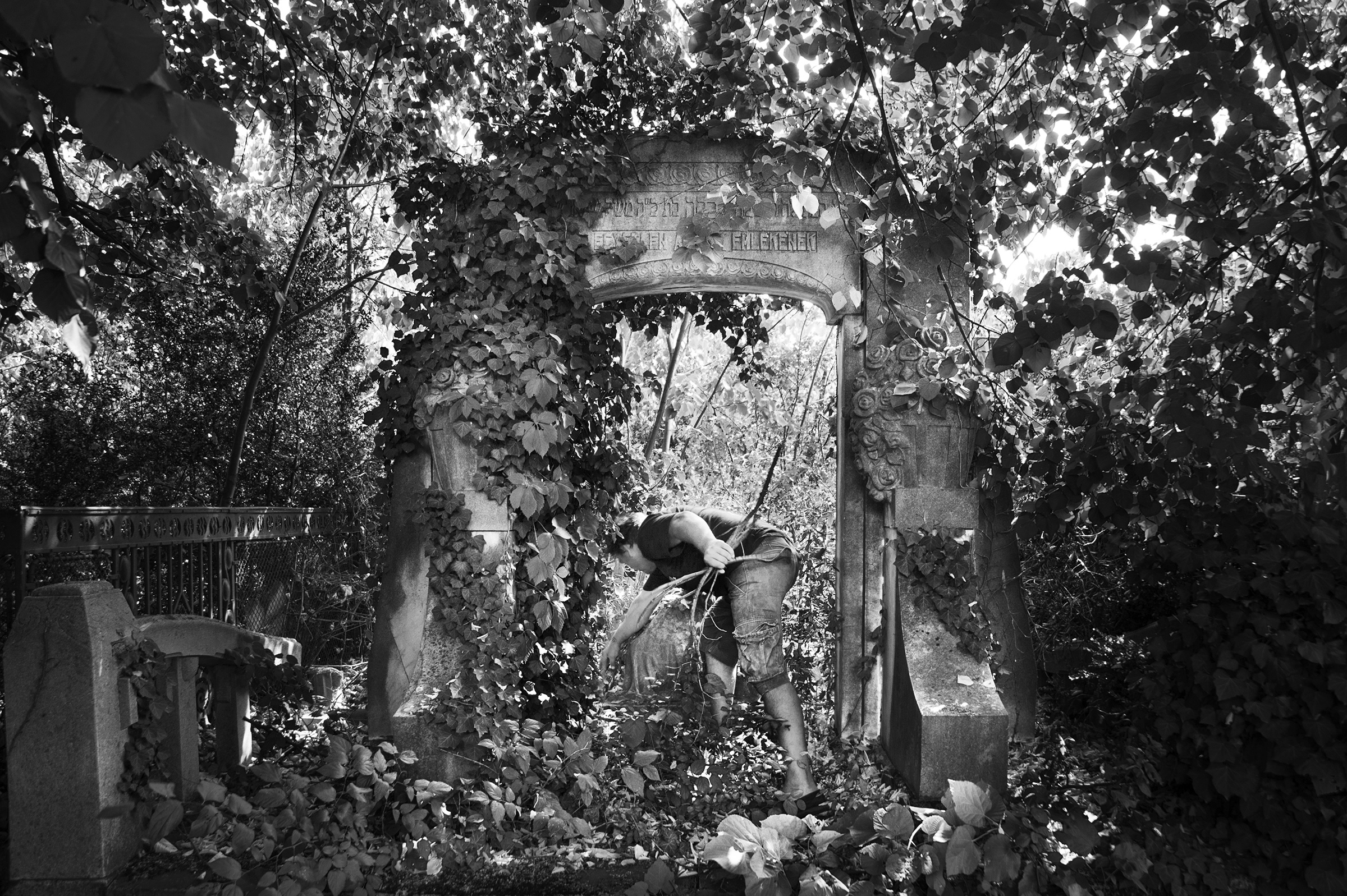A maintenance worker in Oradea's Neologic cemetery clears away small debree from a gravesite that has been overrun with vegetation on August 25, 2013. (Photo by Daniel Owen/GroundTruth)
