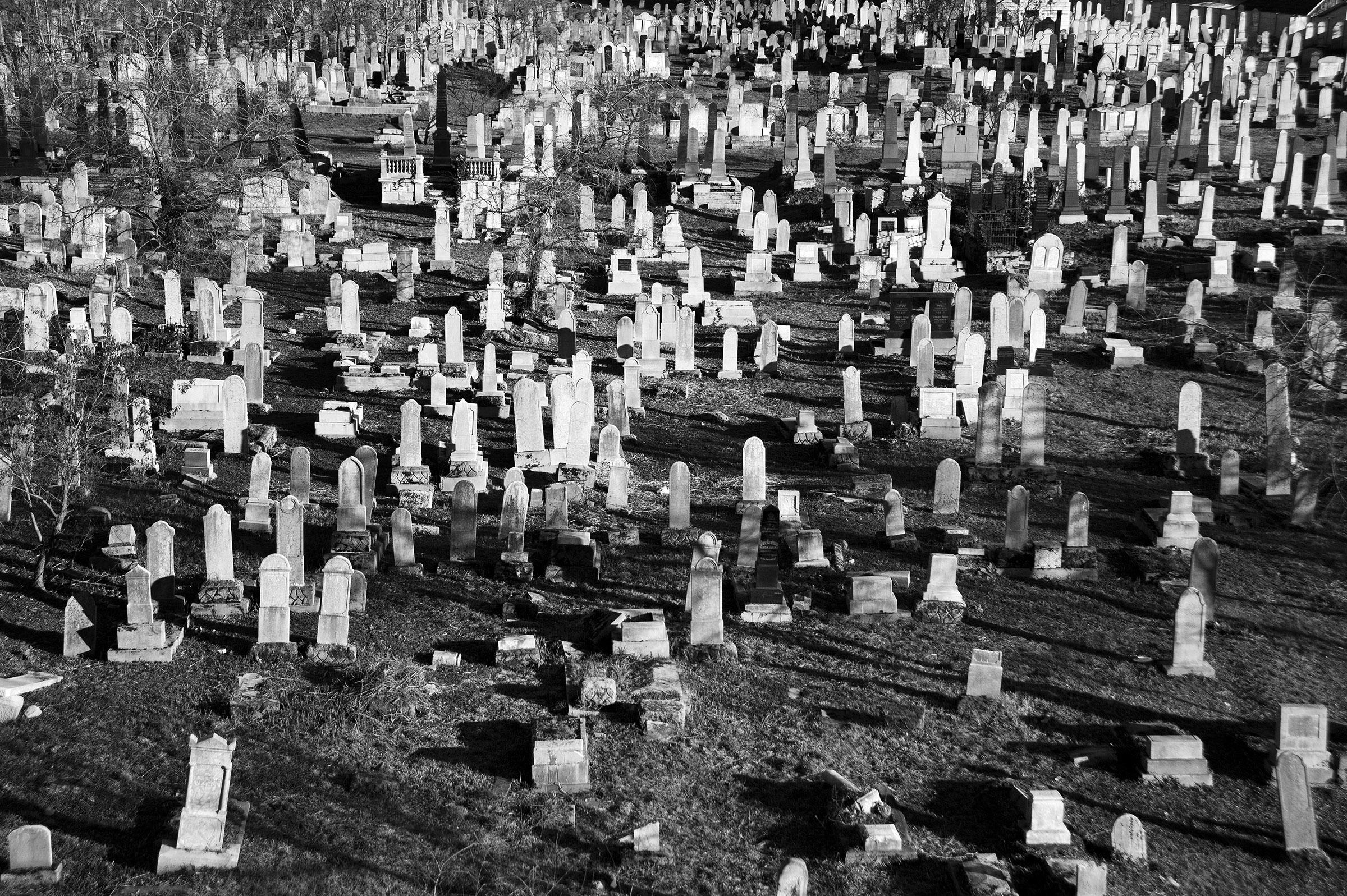 The Jewish Orthodox Cemetery in Velenta, situated in eastern Oradea, sets inactive since 1952 and holds around four thousand graves; January 13, 2015. The oldest Jewish cemetery in Oradea, some of the tombstones predate the 19th century and most are falling into disrepair. (Photo by Daniel Owen/GroundTruth)