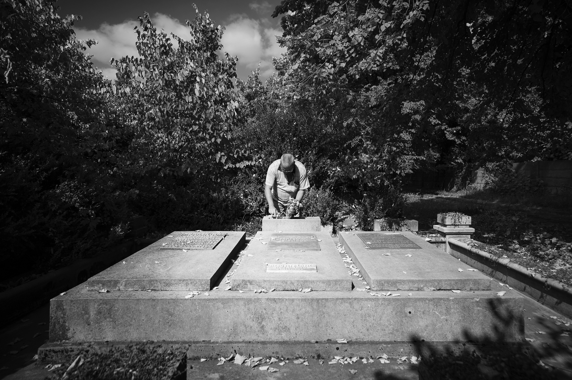 Peter Popper visits the gravesit of his relatives in the small, overgrown Jewish cemetery in Oradea, Romania on August 25, 2013. (Photo by Daniel Owen/GroundTruth)