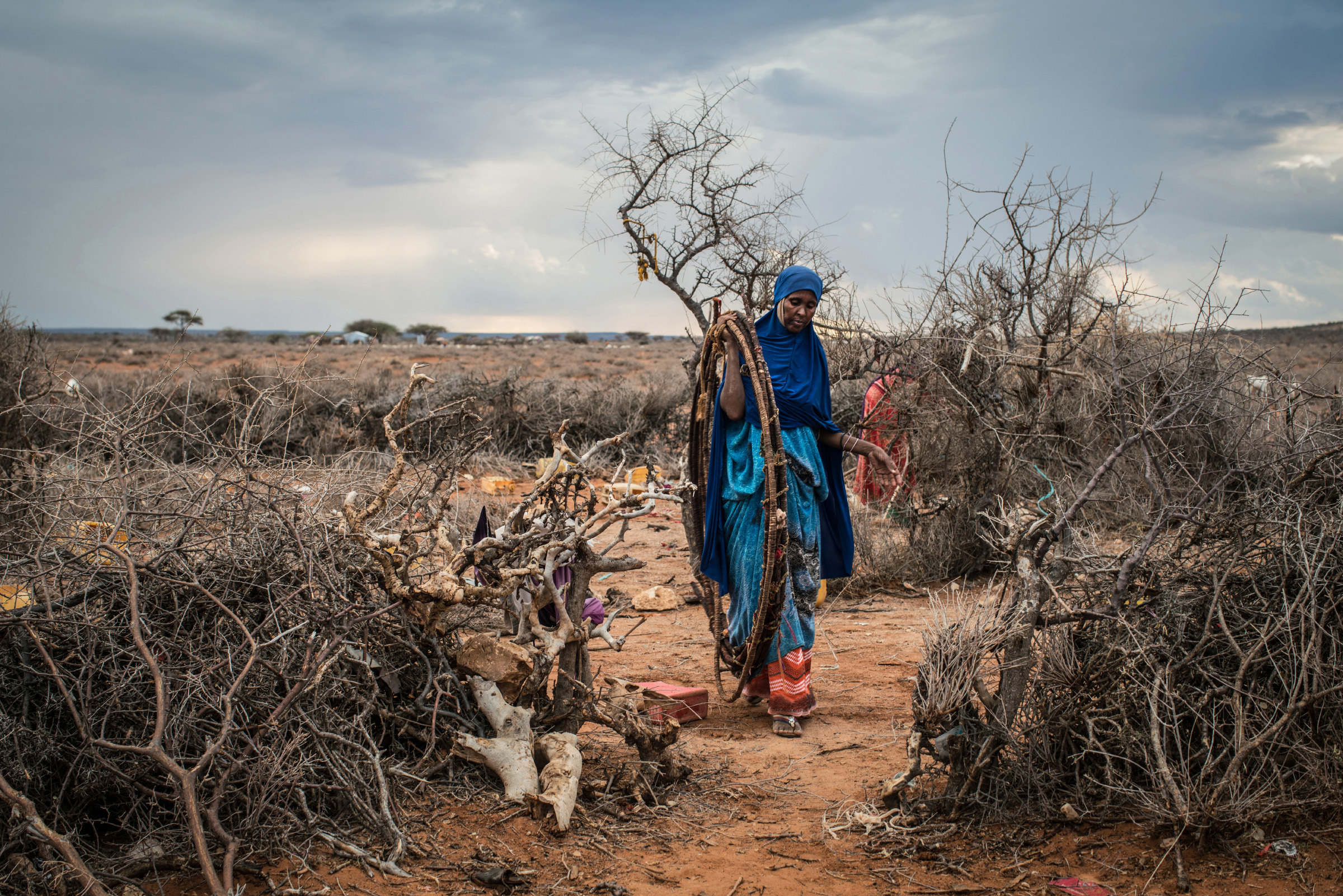 Dheg Mohamed takes apart her home before loading the materials onto a cart to be moved. Several successive seasons of low rainfall left the well in her family's hometown of Aynabo, Somaliland, dry, forcing them to relocate elsewhere. (Photo by Nichole Sobecki/GroundTruth)