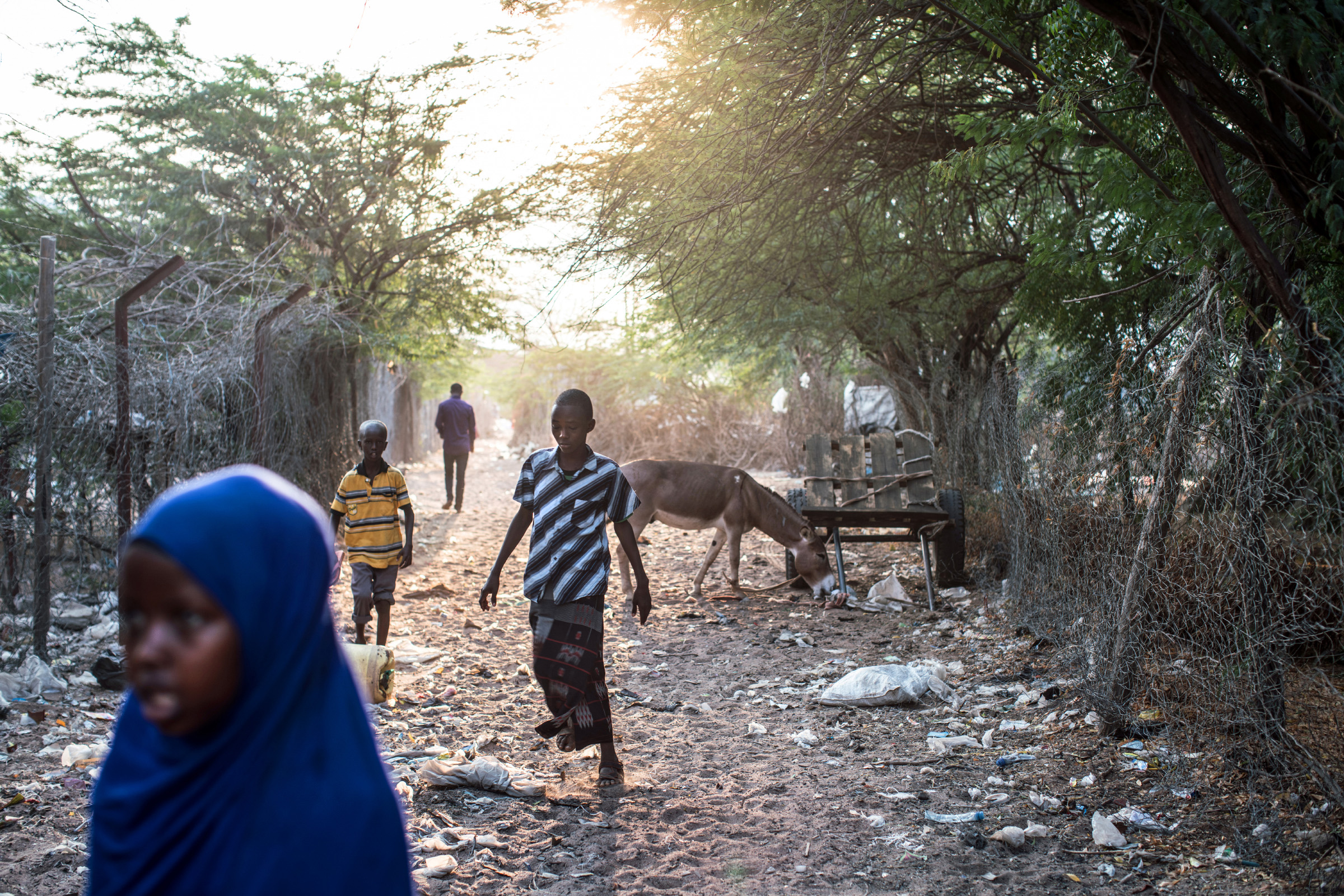 A severe drought in 2011 displaced tens of thousands of Somalis, swelling the population of Dadaab to more than 350,000 and making it one of the largest refugee camps in the world. (Photo by Nichole Sobecki/GroundTruth)