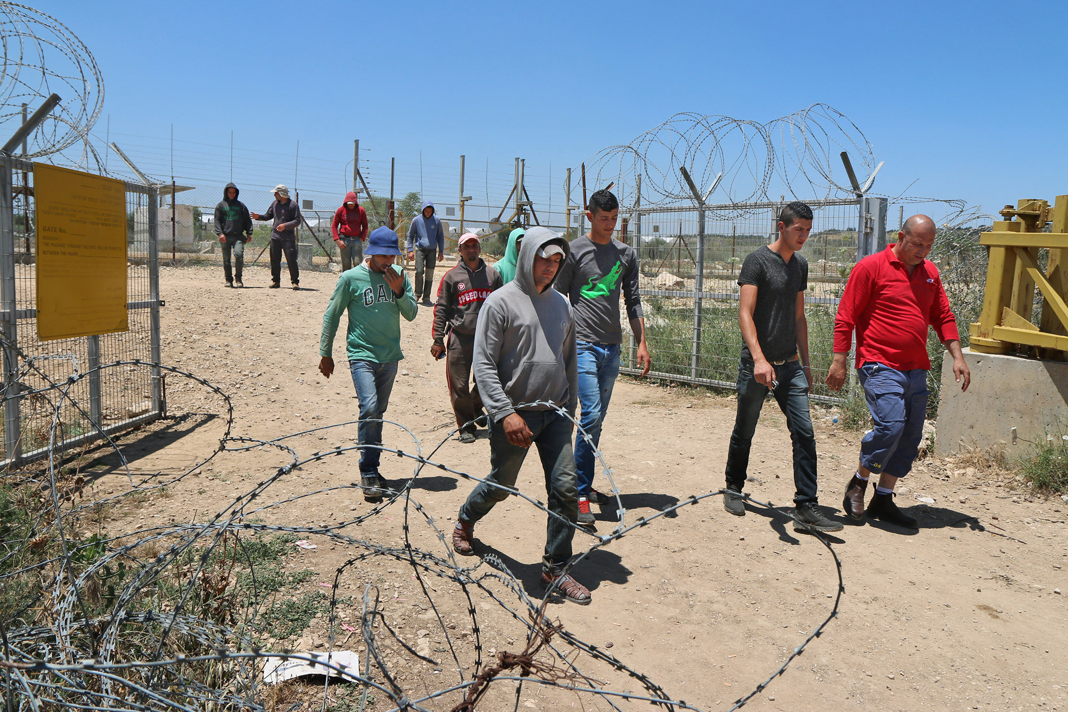 Palestinian farmers walked  beside the agricultural gate of the separation fence in Falamya village (gate 914), West Bank, May 17, 2015.   (Photo by Ahmad Al-Bazz/GroundTruth)