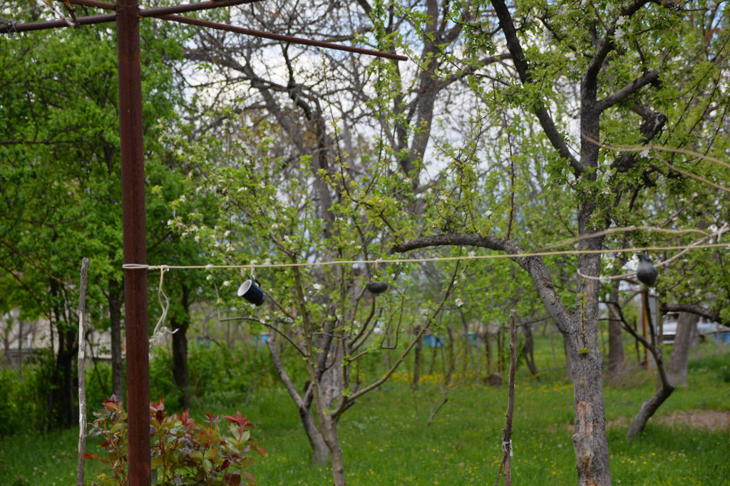 Pottery hangs in Lia Chlachidze's garden, the only remnants of her life she found in her burned down home at the end of the five day war that created the breakaway, pro-Russia region of South Ossetia. (Maryam Saleh/Medill/GroundTruth)