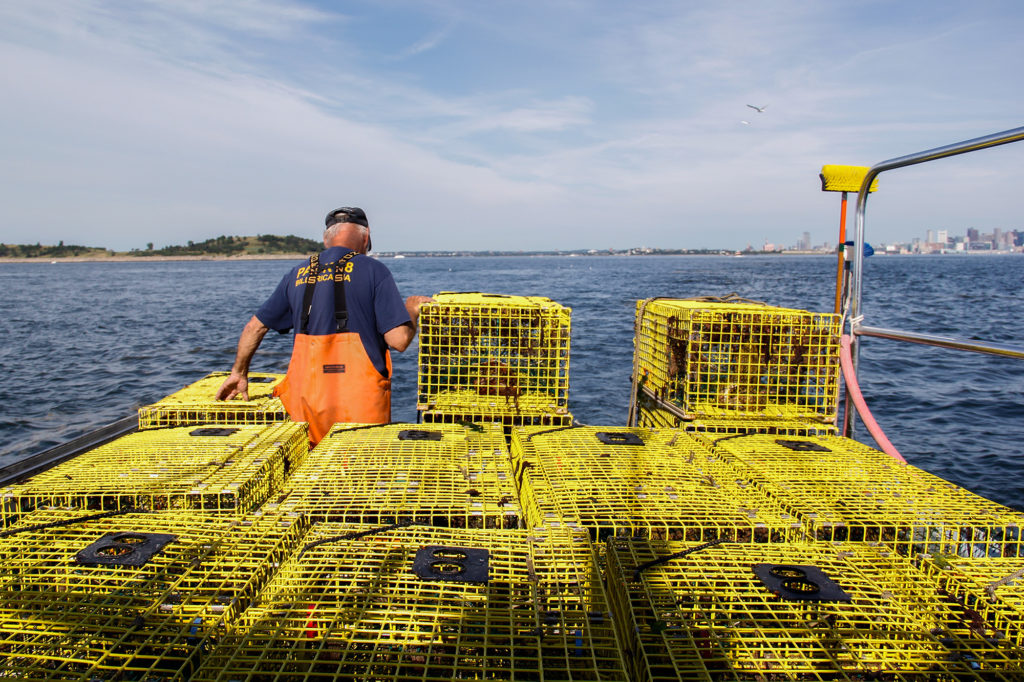Captain Fred Penney is a lobsterman based out of Boston Harbor. He agrees that fishing regulations should take environmental conservation into account, but thinks designating the Northeast Seamounts and Canyons as a national monument circumvented the fisheries management process. (Ellen Kazinger/GroundTruth)