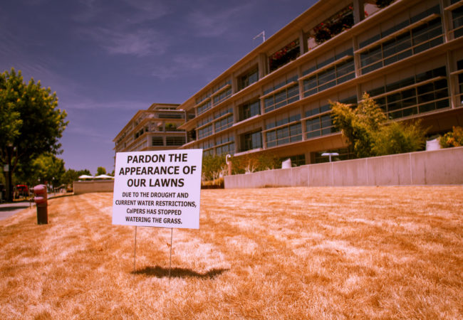 Katharine Mieszkowski reported on the largest residential water users during the California drought. (Kevin Cortopassi/Flickr Creative Commons)