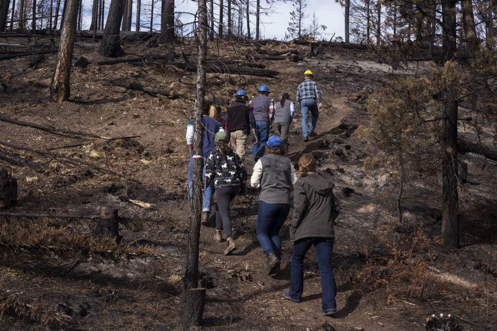 Members of the Southwestern Crown Collaborative hike up a mountainside to get a view of the Rice Ridge Fire burn sites outside of Seeley Lake, Montana, on Thursday, October 19, 2017. (Photo by Brittany Greeson)
