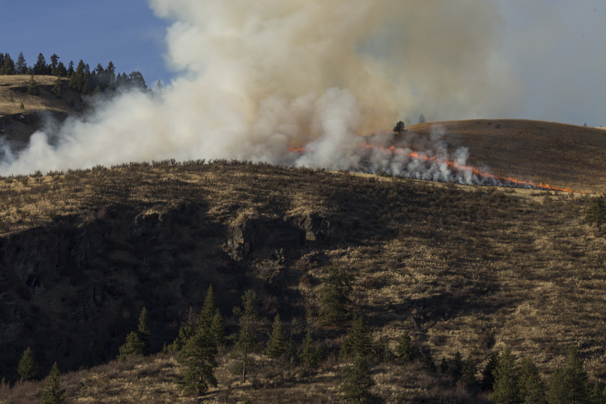 A prescribed burn prepared by the Confederated Salish and Kootenai Tribes Division of Fire skims the ridge line just outside of Elmo, Montana, on Tuesday, October 24, 2017. (Photo by Brittany Greeson)