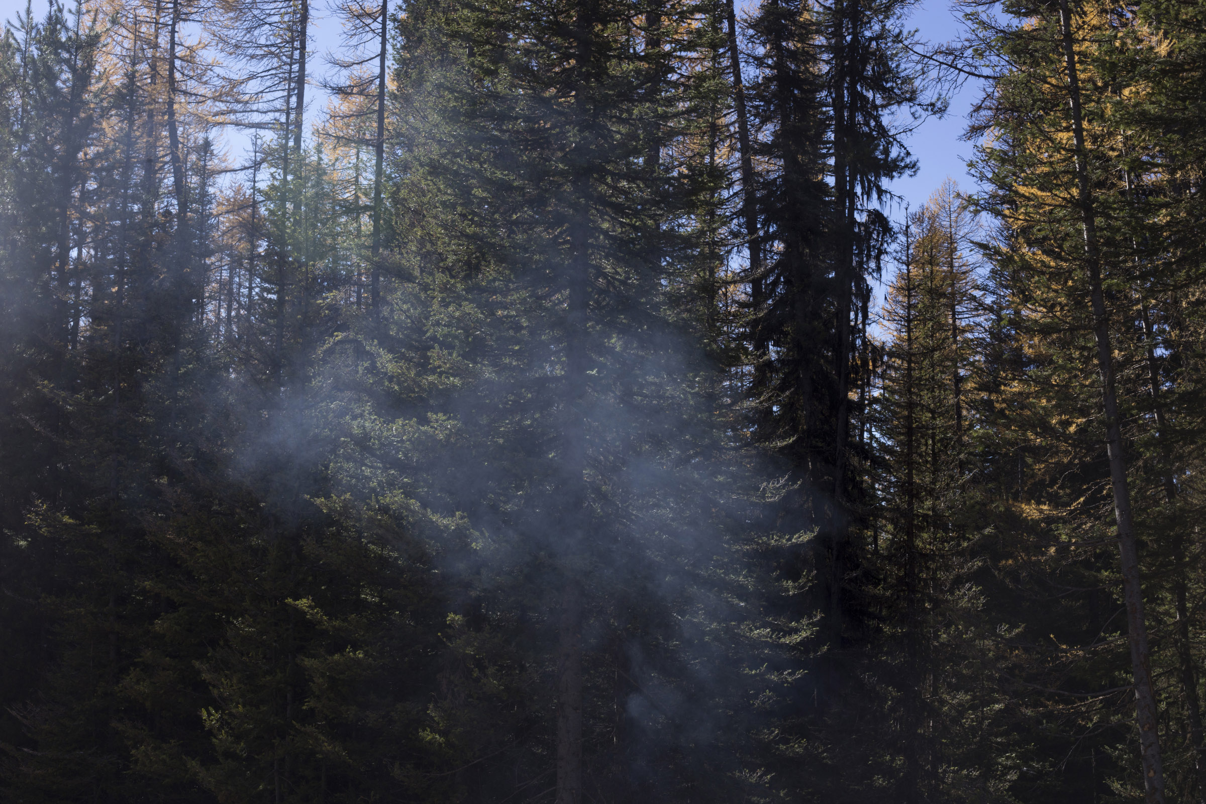 Smoke rises from a smoldering fire in the forest outside of Seeley Lake, Montana, on Thursday, October 29, 2017. (Photo by Brittany Greeson)
