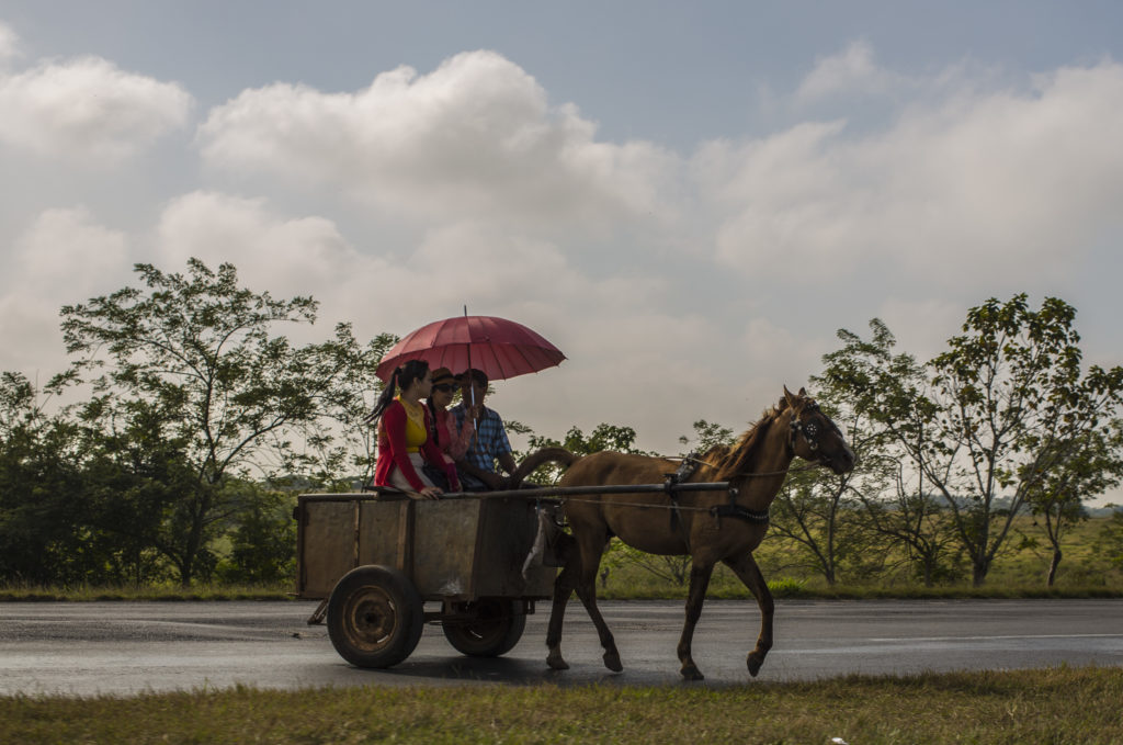 A horse and buggy drive on a road in Sandino, Cuba. (Photo by Desmond Boylan/GroundTruth)