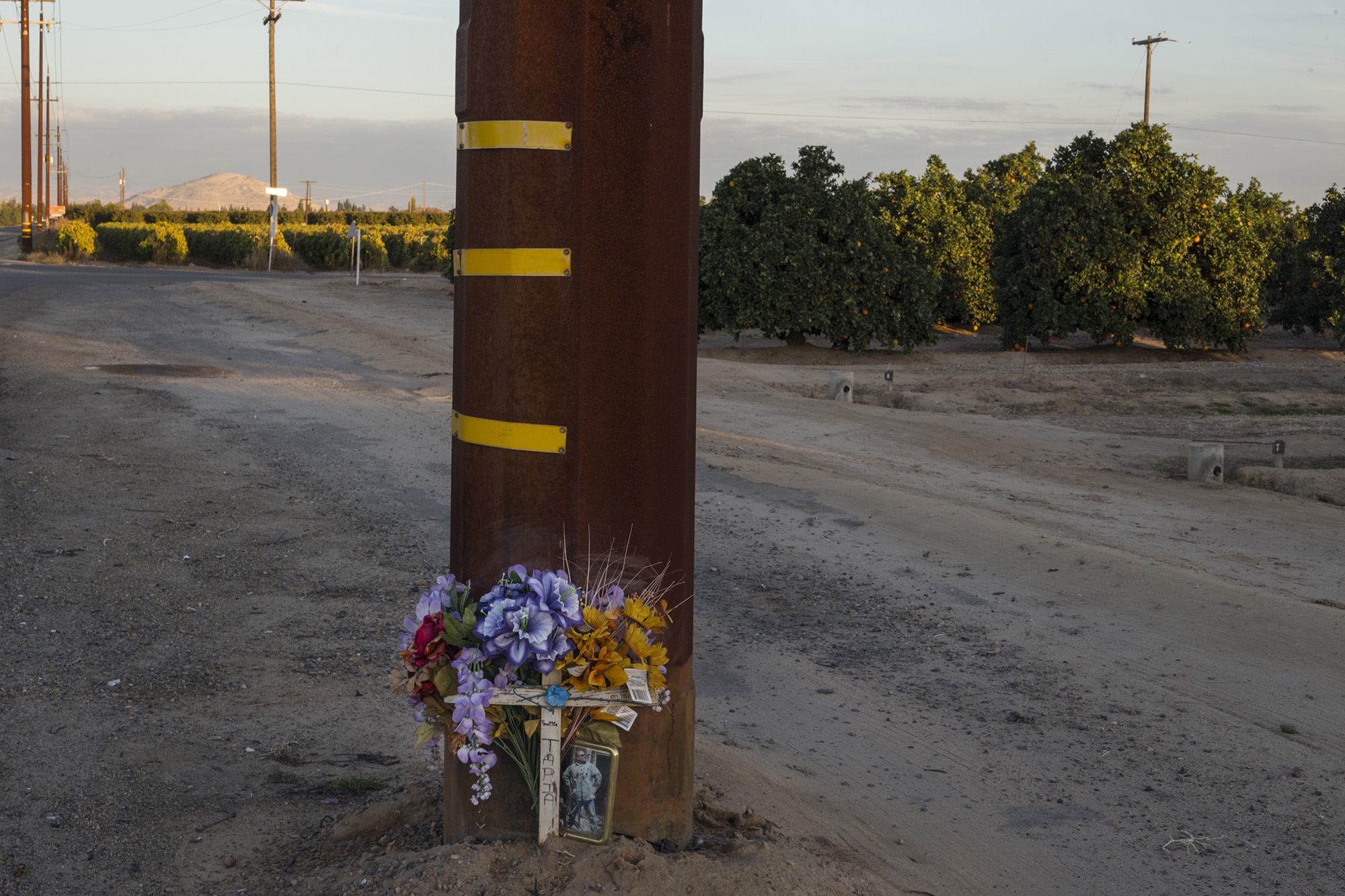 A memorial stands against a telephone pole at the edge of a highway spanning miles of agriculture in Fresno, Calif., on Friday, November 10, 2017. (Brittany Greeson/GroundTruth)