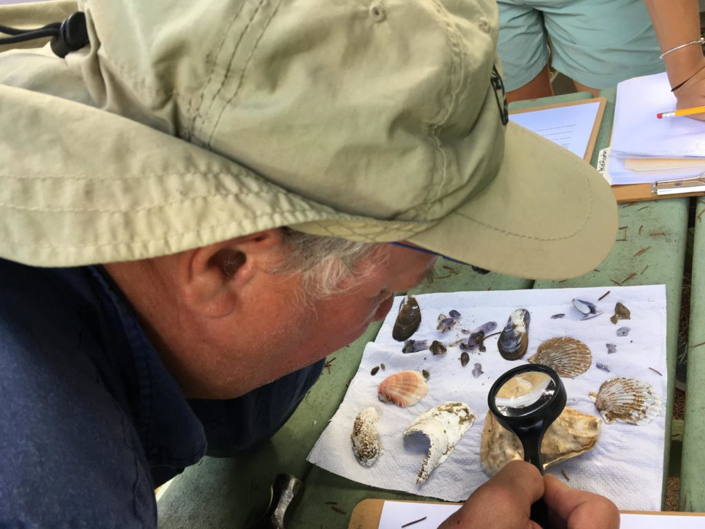 Jonah Maidoff, a middle and high school teacher on Martha's Vineyard, examines a shell that has been sitting in a vinegar solution, as part of a lesson on climate change and ocean acidification. (Photo by Samantha Fields/GroundTruth)