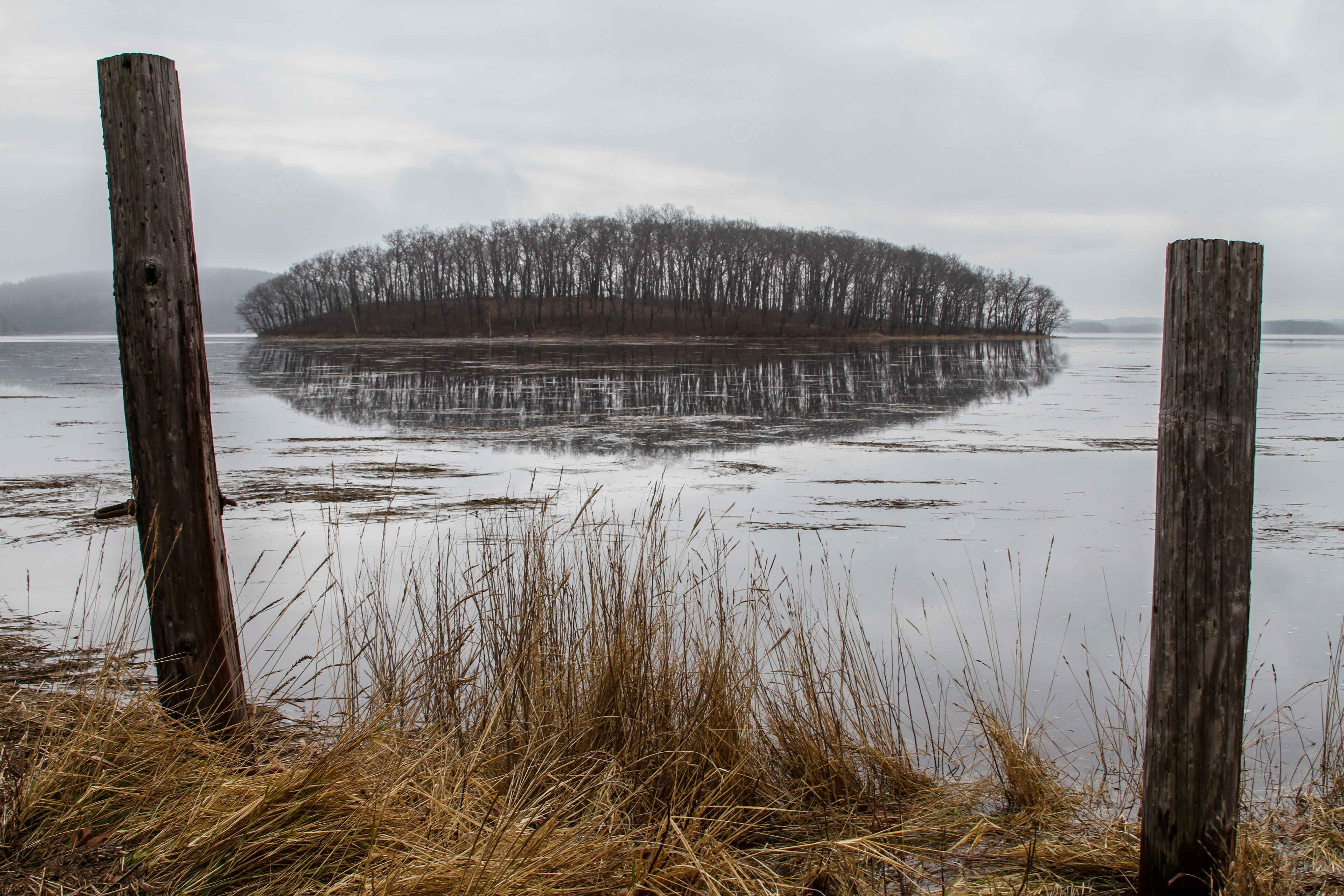 A flood tide swamps the uplands dotting the Great Marsh near Crane Beach, turning them into islands. Neighbors call this one Pine Island. When the tide is low, a dirt road to the left of these posts allows clammers to drive across the marsh and launch their boats in a creek.(Photo by Coco McCabe/GroundTruth)