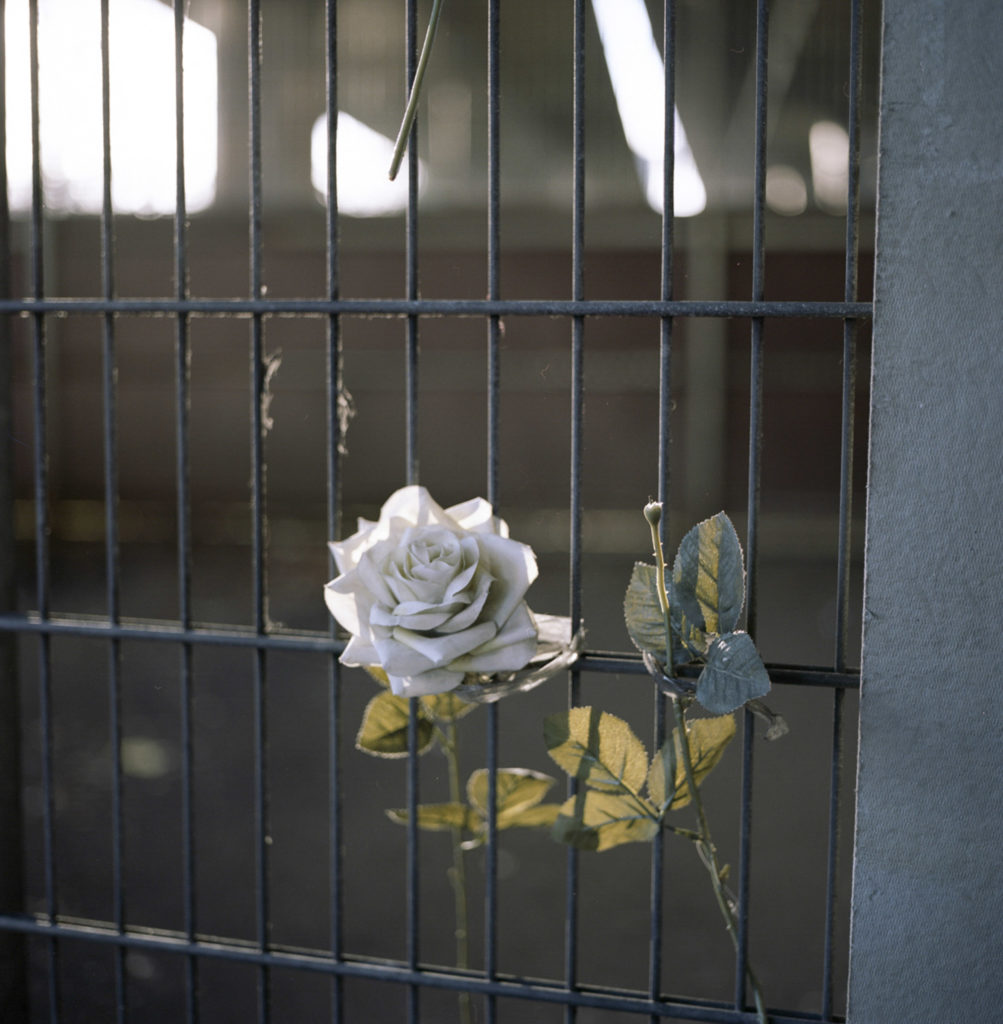 A flower was left between the wires of a fence beneath the Westway on Latimer Road in honor of the Grenfell victims of June 14th, 2017.